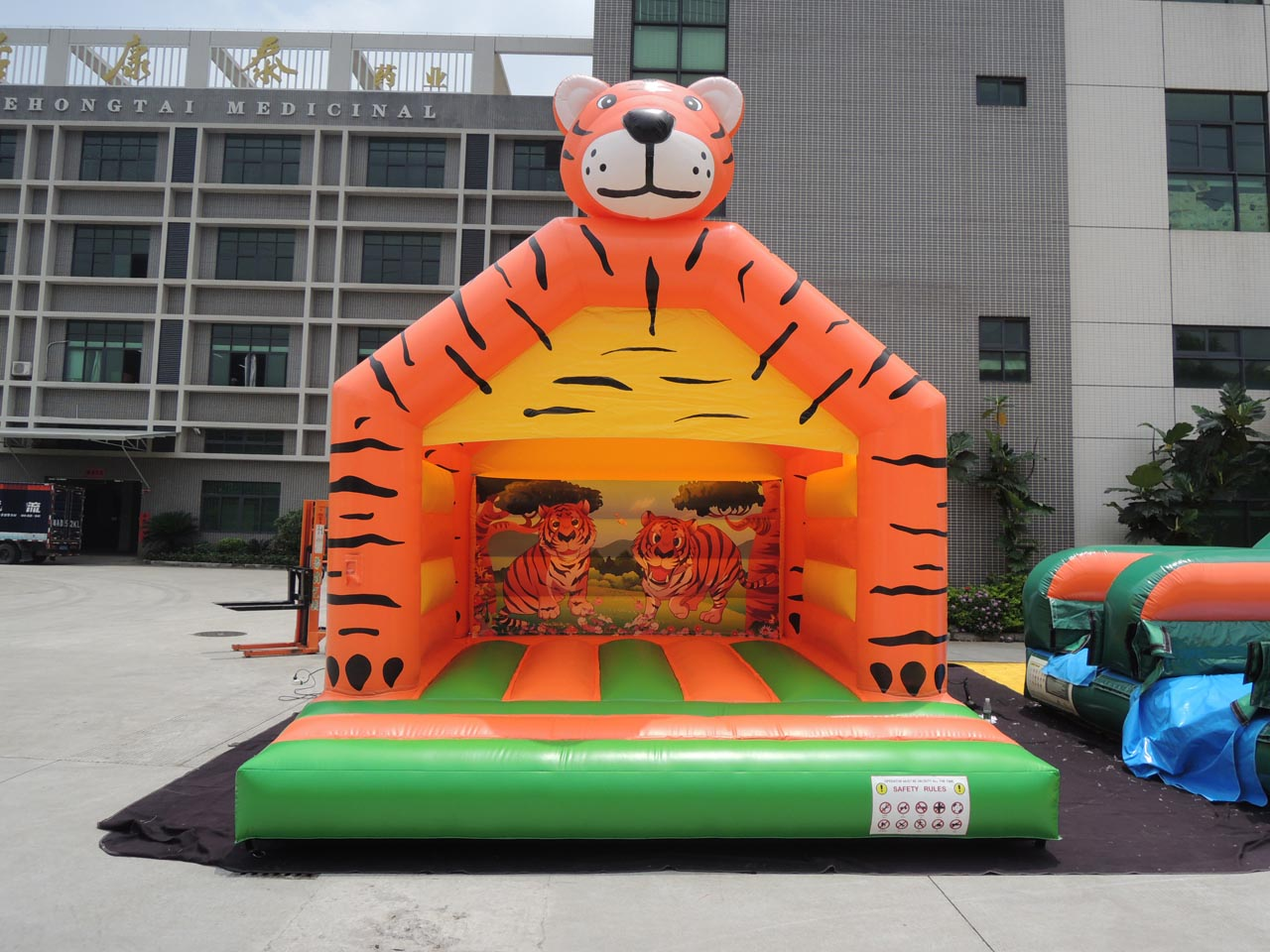 Small Adults Tiger Hire